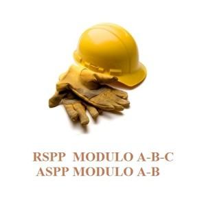 RSPP-e1435144456195